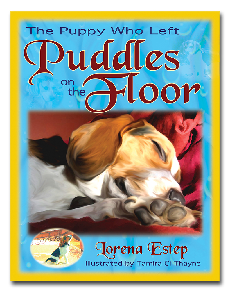 Puddles on the Floor